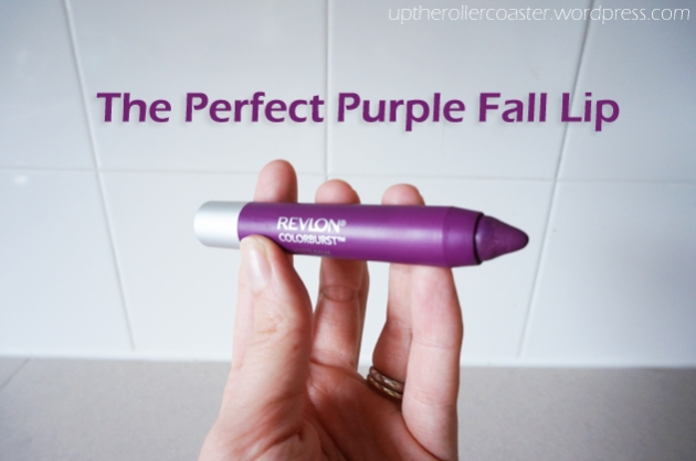 The Perfect Purple Fall Lip | Up the Rollercoaster