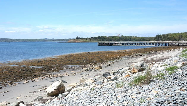 On a Hike with Coppertone Clearly Sheer - McNabs Island Dock | uptherollercoaster