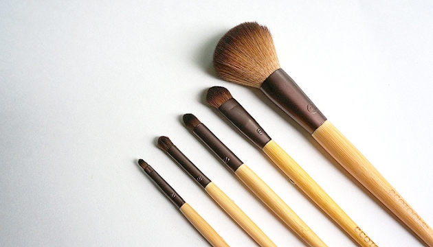 ecotools Day to Night Brush Set | uptherollercoaster.com